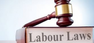 Introduction to Labour Law